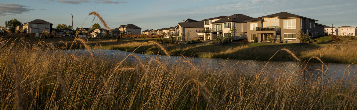 Ridgewood West Homes on Native Grasses and Wetlands