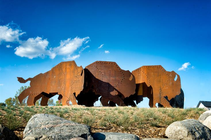 Running Bison and the Rubbing Stone - by David MacNair